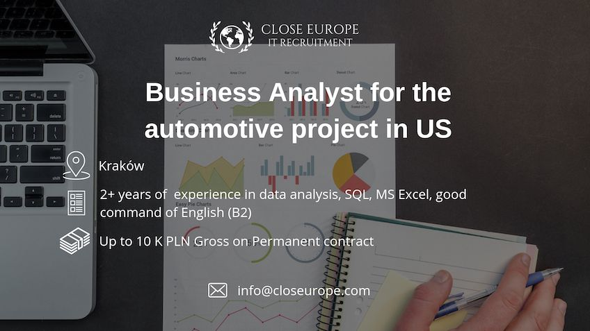 Business Analyst in the automotive sector in USA